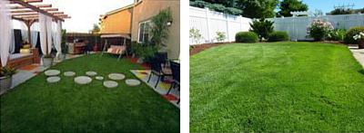 Jacks-Turf-Artificial-vs-Real-Grass